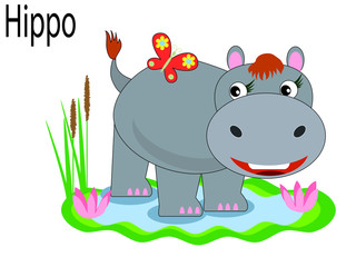 Vector animals,hippo