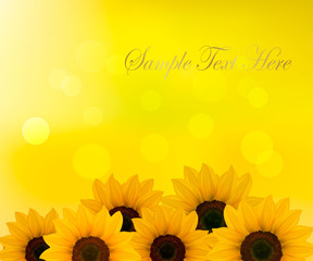 Background with yellow sunflowers. Vector illustration.