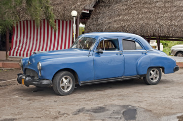 Garden Poster Cars from Cuba Old cuban car.
