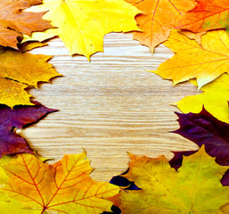 the autumnal leaves over wooden board backg