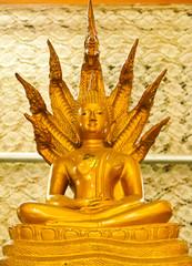 sitting buddha image with seven head naka