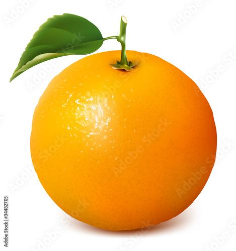 Corporate Website of Orange  orangecom