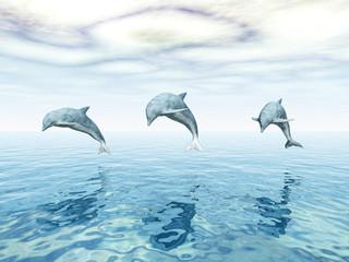 Jumping Dolphins - Springende Delfine