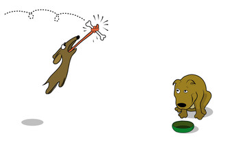 Agile dog