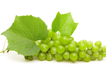 Green grape with leaves and water drops closeup