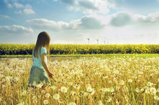 Little girl in dandelion field