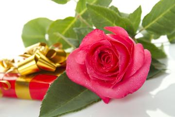 Red Rose, gift box