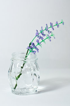 glass container with water and plastic lavender