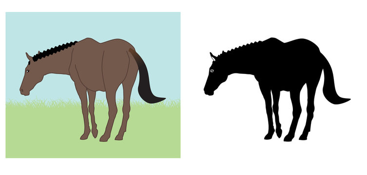 Set of Horse silhouette