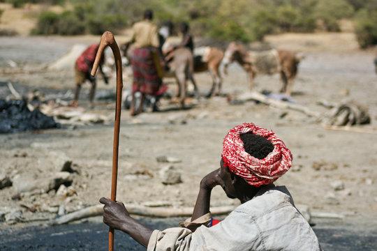 Raccoglietore di sale. El Sod, Etipia