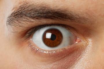 close-up shot of young man brown eye
