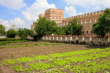 City Walls of Constantinople