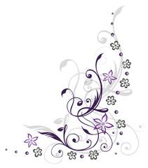 Ranke, flora, Blumen, Blüten, filigran, violett, grau