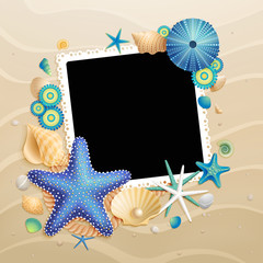 Wall Mural - Pictures, shells and starfishes on sand background