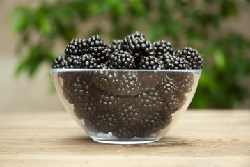 blackberries in bowl on gardentable