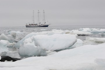 Yacht in the Arctic fjord