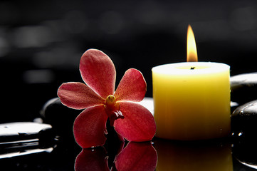 Photo sur Aluminium Spa spa scene - burning,candle and red orchid on zen stones