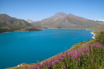 Fototapete - Moncenisio-Lago alpino