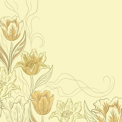 Flowers tulips on a light brown