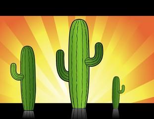 Cactus atardecer en el oeste