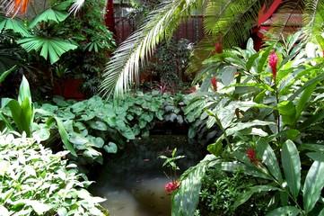 Thailand green garden