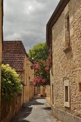 St Leon sur Vezere 2