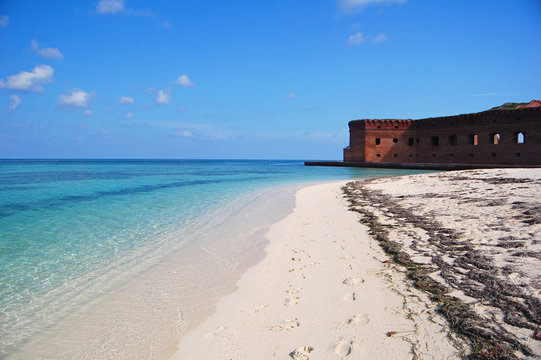 beach at fort jefferson, dry tortugas, florida