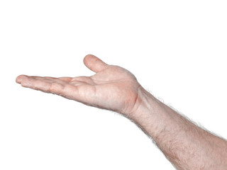 male palm