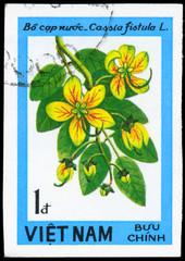 VIETNAM - CIRCA 1984 Cassia
