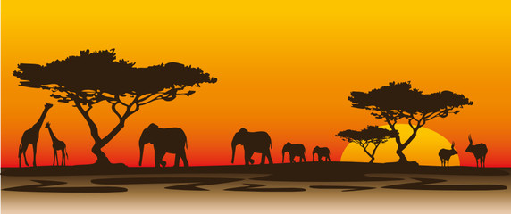 Abendstimmung Afrika