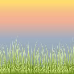 Ecology Grassline