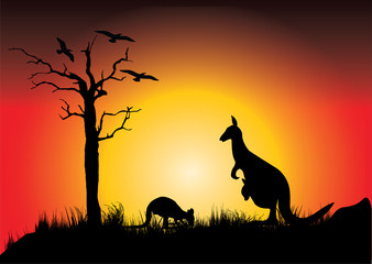 sunset with two kangaroos