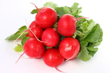 Isolated vegetables - Radish