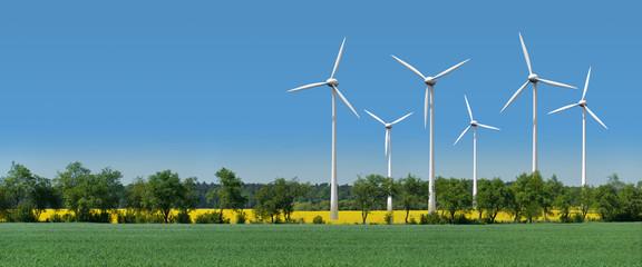 Windkrafträder in einem Rapsfeld hinter einer Allee