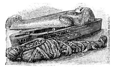 Egyptian mummy and sarcophagus (British Museum), vintage engravi