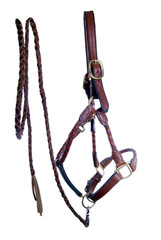 Leather Halter and Braided Leadrope