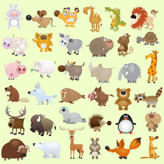 Poster de jardin Zoo Big vector cartoon animal set