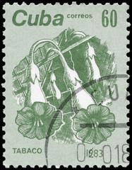 CUBA - CIRCA 1983 Tobacco