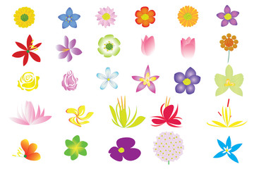 Flower Collection, Vector design