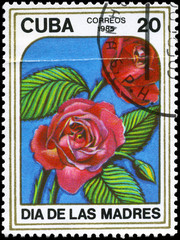 CUBA - CIRCA 1985 Rose