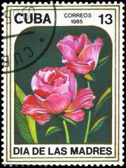 CUBA - CIRCA 1985 Roses