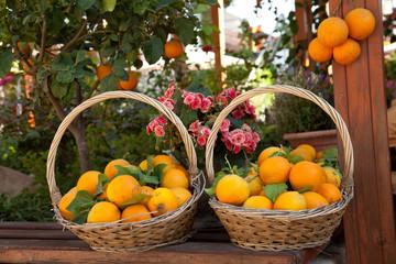 Korb voller Orangen