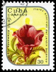 CUBA - CIRCA 1986 Allamanda