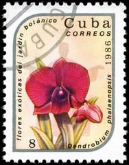 CUBA - CIRCA 1986 Dendrobium