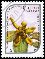 CUBA - CIRCA 1986 Michelia