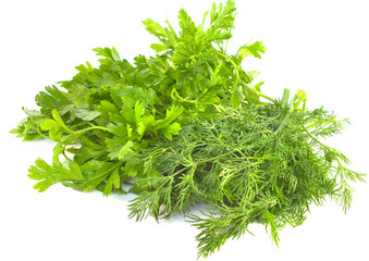 Dill and parsley on a white background
