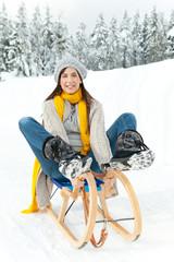 single winter schlitten