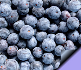 Fresh Blueberries On Recipe Page