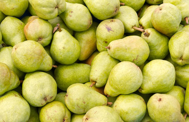 Bartlett pears on display