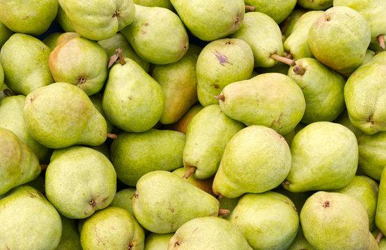 Bartlett pears on display